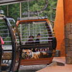 Кольморден - зоопарк в Швеции