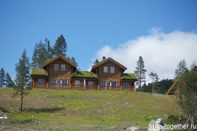 Традиционные норвежские дома с травой на крыше по дороге Осло - Ставангер