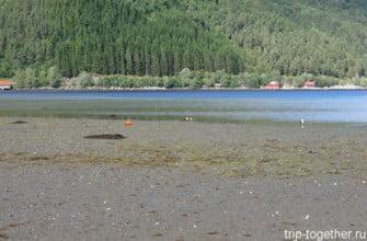 Fugelvåg Camping. Отлив. Норвегия