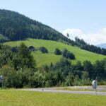 Альпийские лужайки