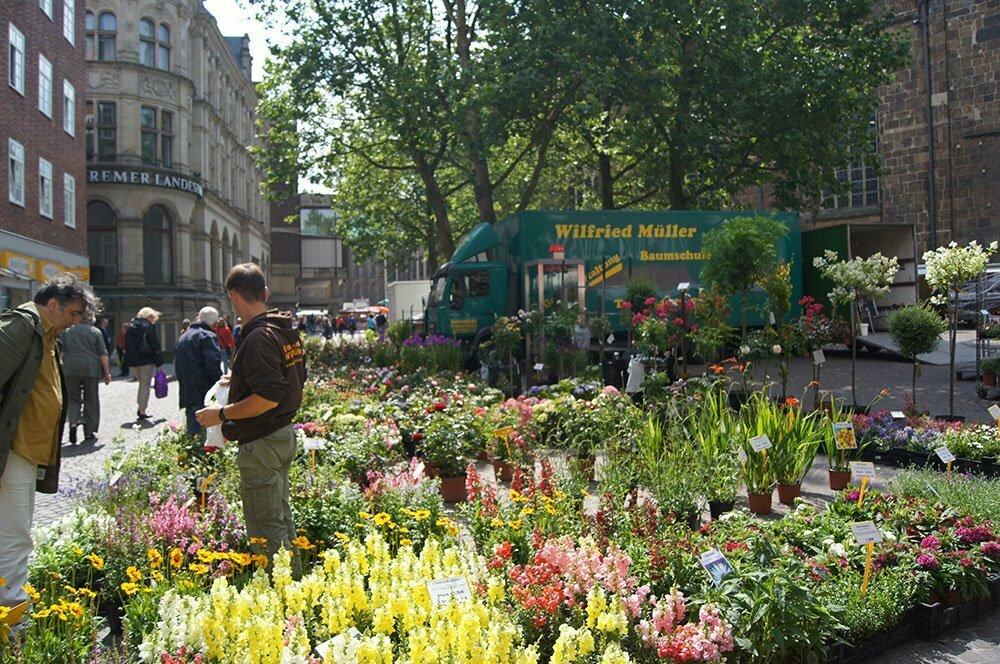 Цветочный рынок Бремена