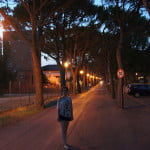 Аллея в Cortellazzo