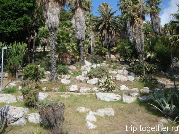 Ботанический сад Барселоны, автобус проезжает мимо