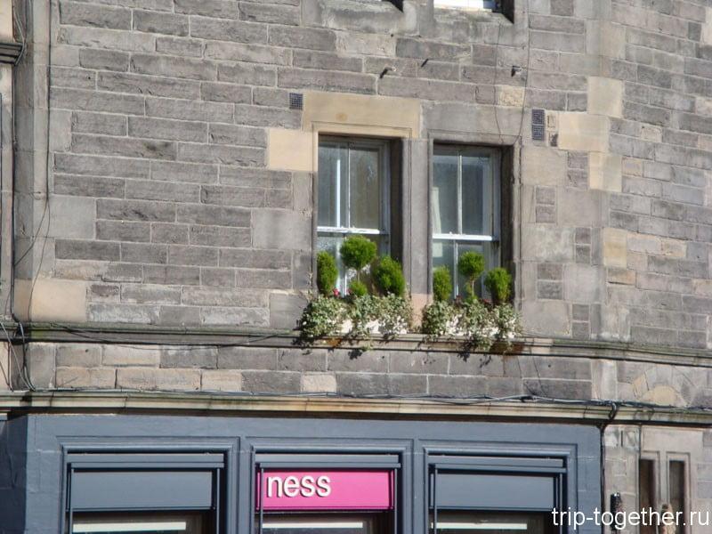 Просто симпатичное окно в Эдинбурге
