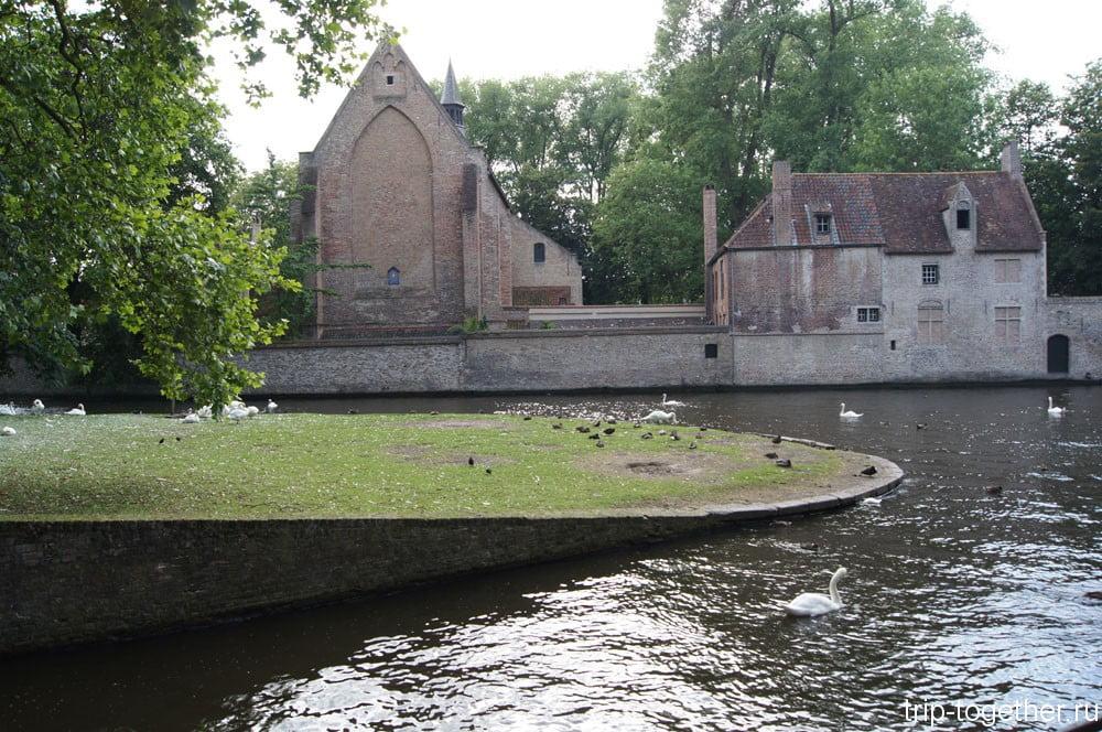 Лебеди в Брюгге
