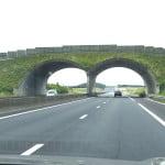 Переходы автострад для животных во Франции