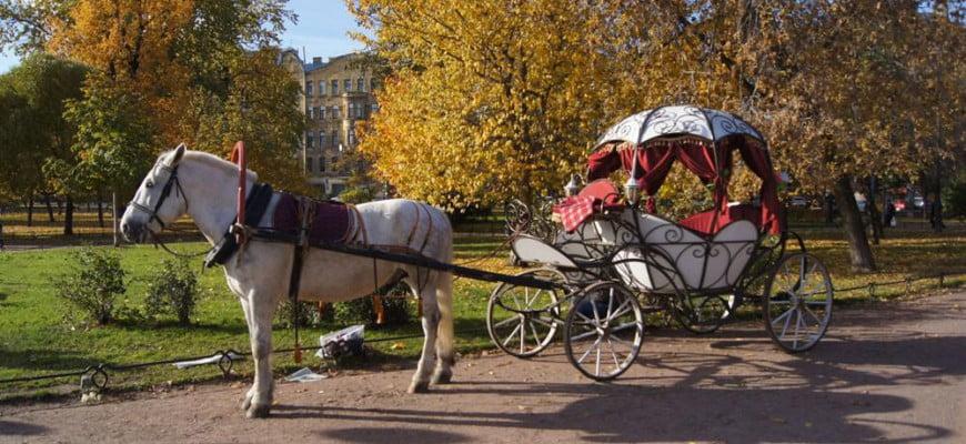 Карета Золушки. Санкт-Петербург
