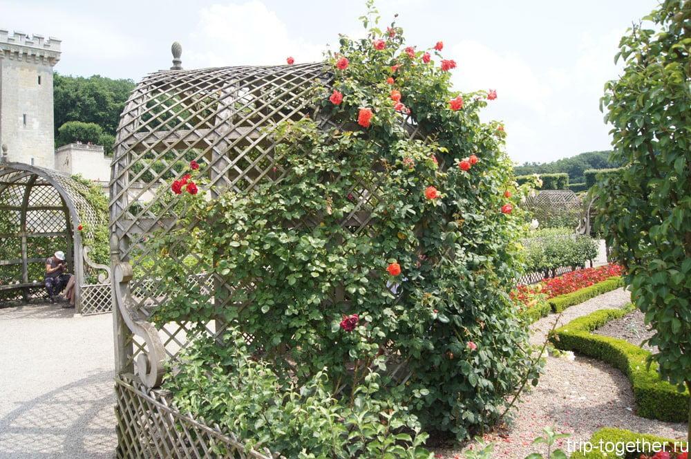 Беседка в обрамление плетистых роз, сады Вилландри
