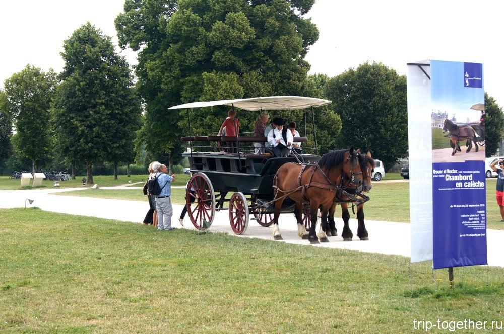 Прогулочная конная повозка