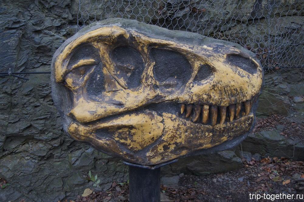 Аллея окаменелостей в Пражском зоопарке