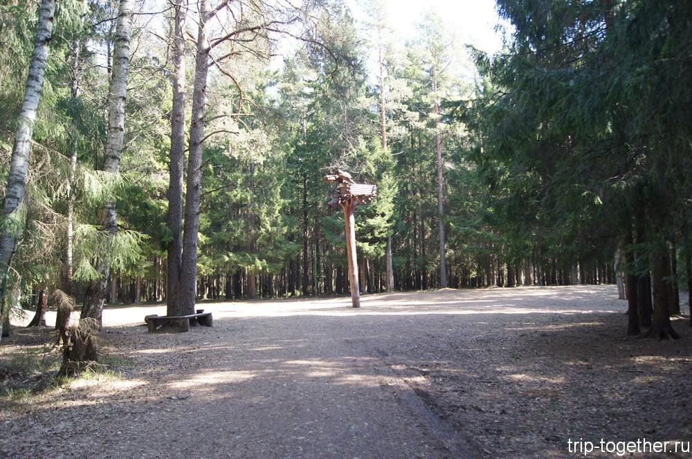Токсовский лесопарк