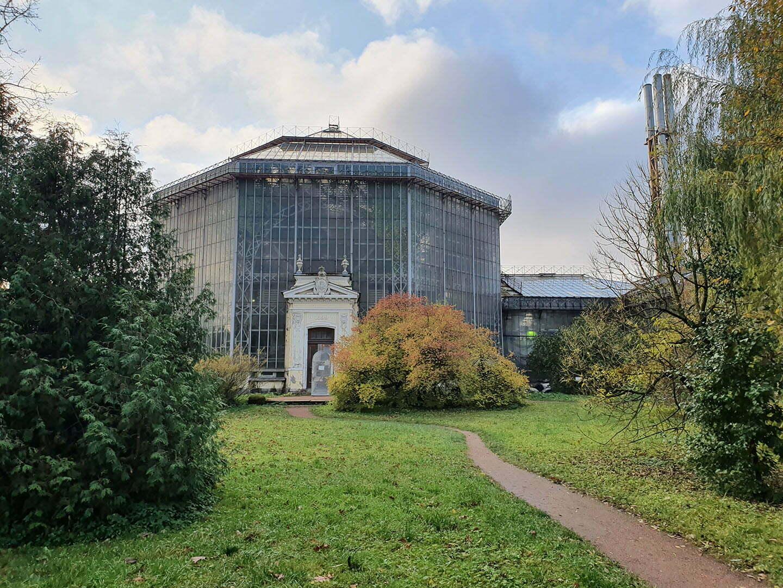 Пальмовая оранжерея Ботанического сада Петербурга