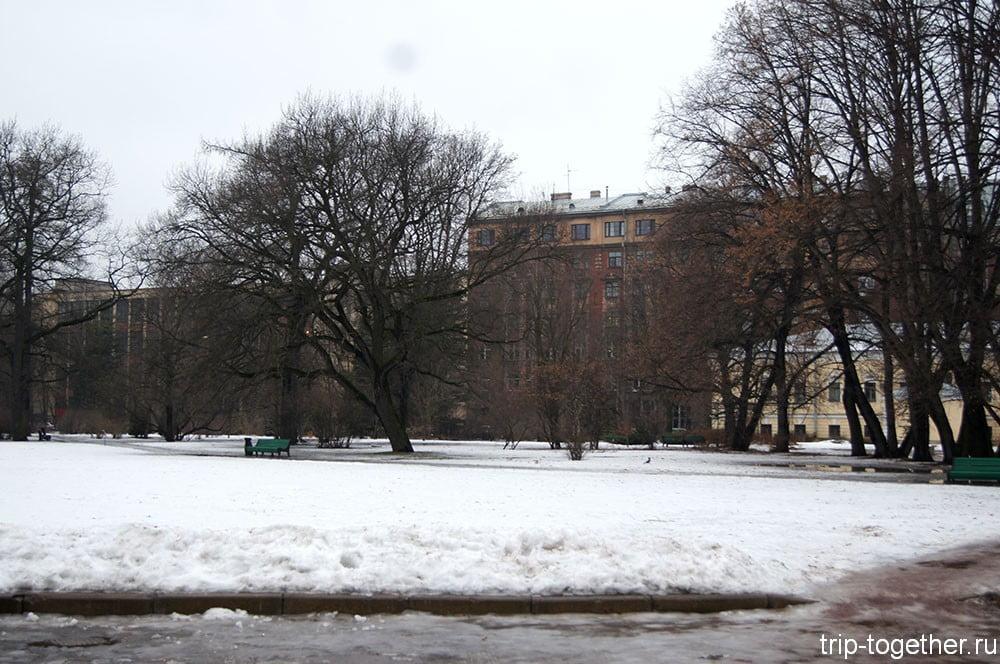 Ботанический сад зимой