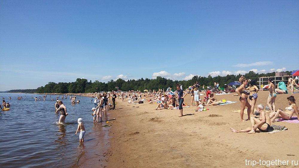 Золотой пляж в Зеленогорске в субботу и хорошую погоду