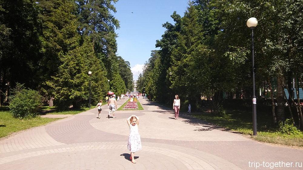 Главная аллея парка Зеленогорска