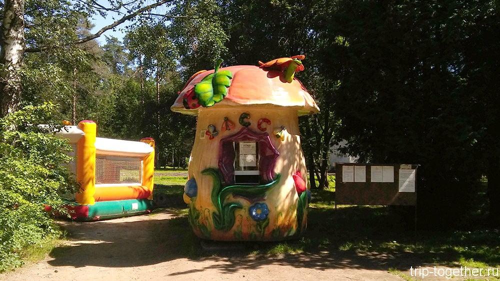 Веселая касса в парке Зеленогорска