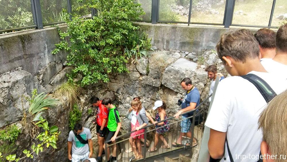 grotta-gigante2
