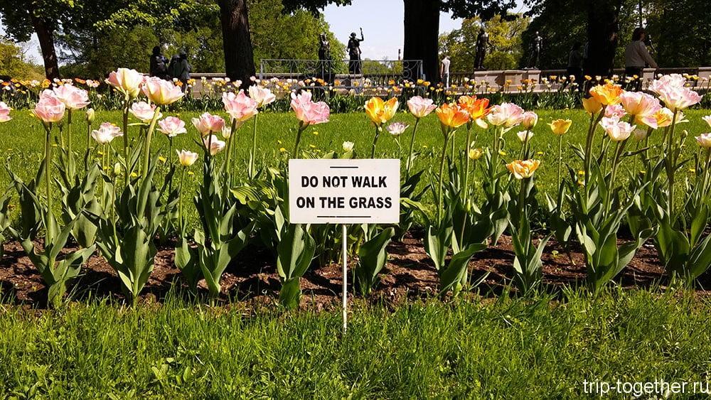 Do not walk on the grass