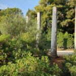 Колонны в Пунта-Корренте