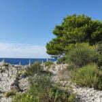Пляж с противоположной Ровиню стороны