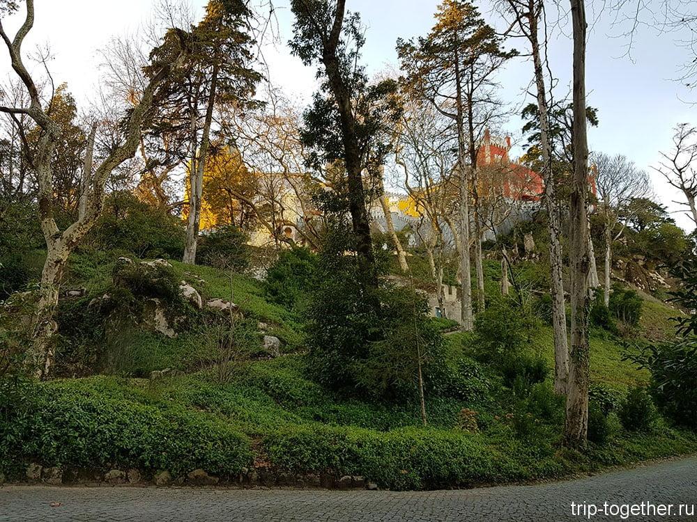 Дворец Пена, парк