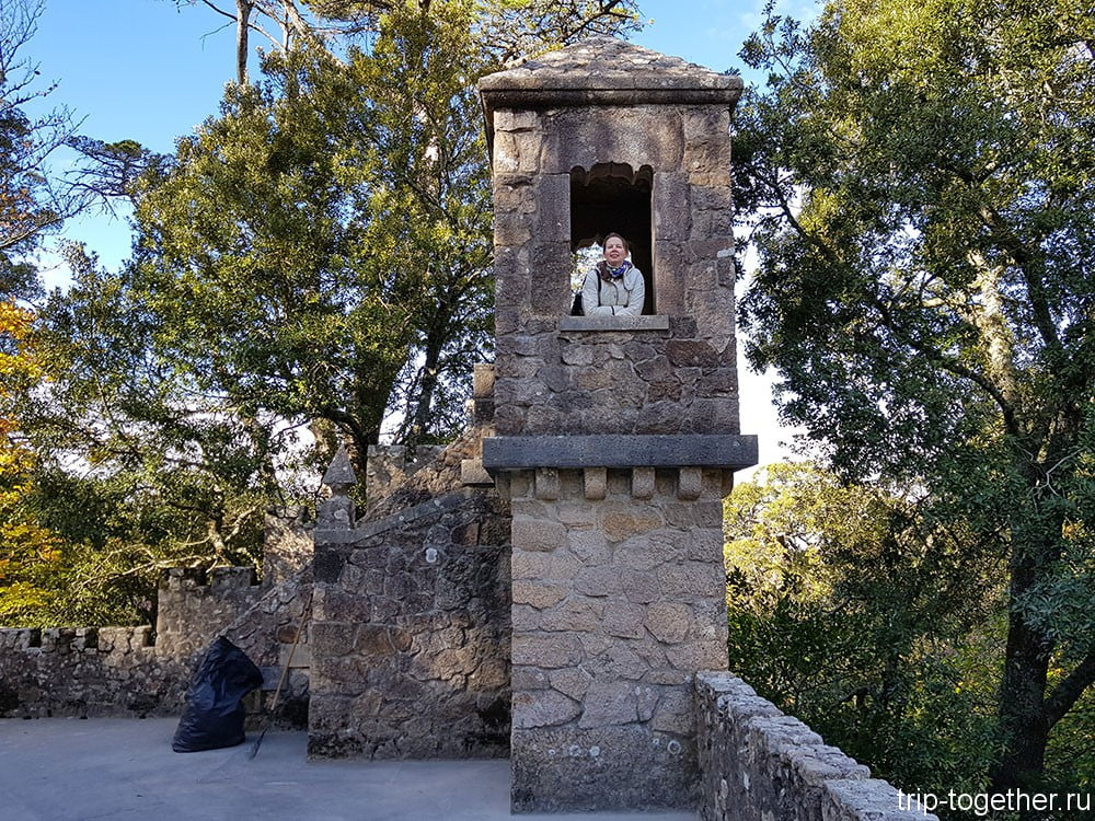 Кинта да Регалейра