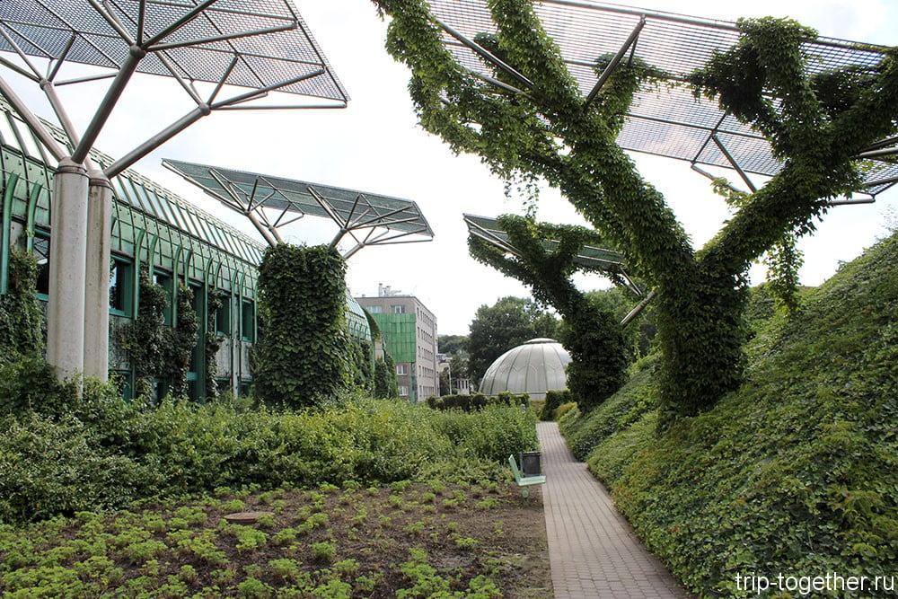 Сад на крыше библиотеки Варшавского университета