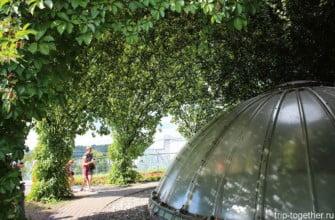 Сад на крыше Варшавского университета