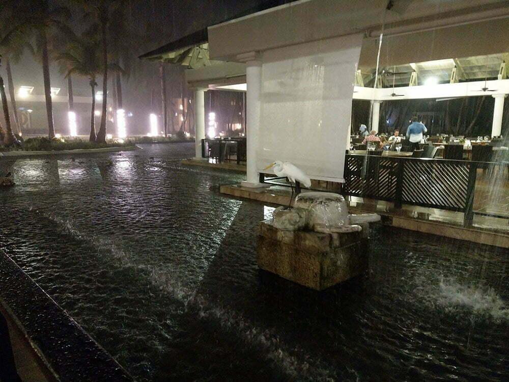 Тропический ливень в Пунта Кана