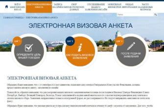 Электронная визовая анкета, пример заполнения