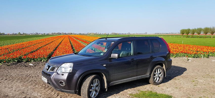 По тюльпановым полям на машине