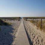 Хук-ван-Холланд - дюны