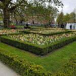 Сад рядом с Рейксмузеум