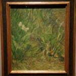 Ван Гог, Сад с бабочками, Рейксмузеум