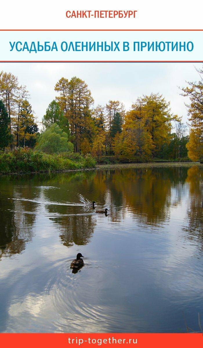 Усальба Олениных в Приютино - пруд