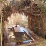 Сафари-бар в парке Каменяк