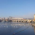 Прогулка на речном кораблике по Влтаве в Праге. Какую выбрать?