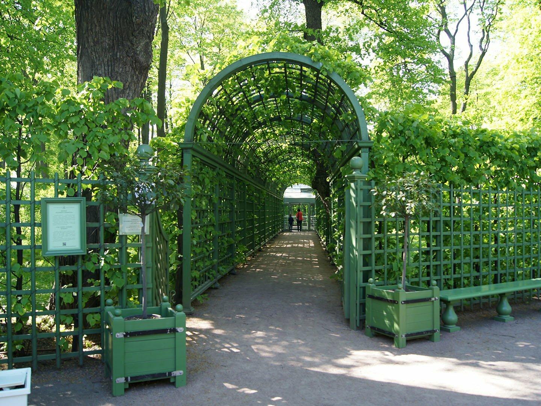 Боскет Зеленые кабинеты