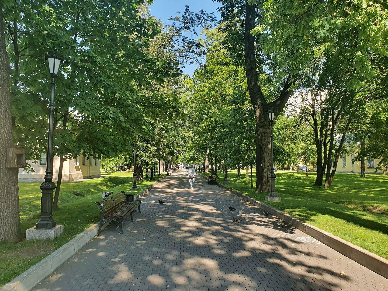 Главная аллея парка Кушелевой дачи