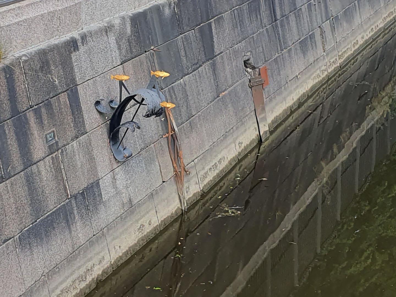 Памятник колюшке на Обводном канале в Кронштадте