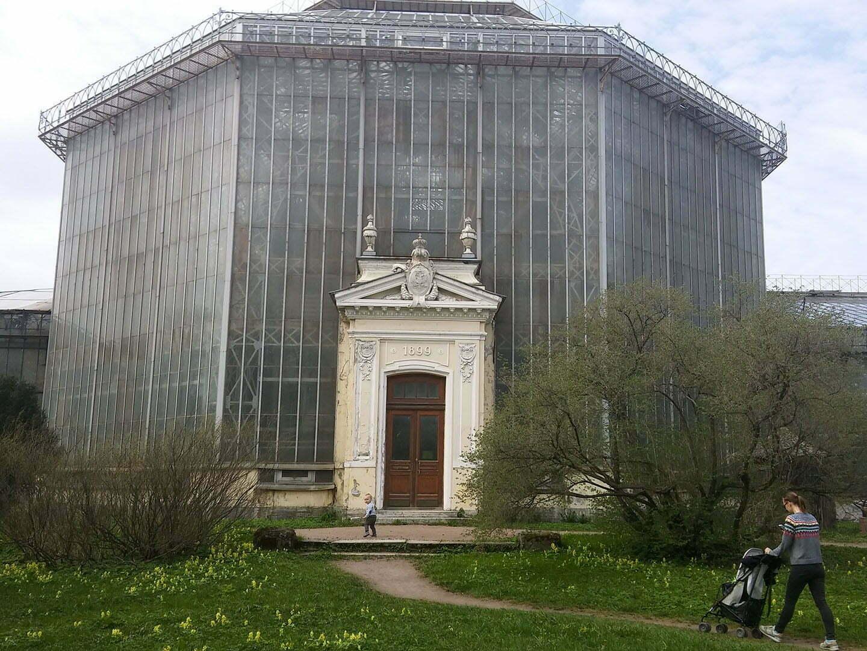 Ботанический сад Петербурга, пальмовая оранжерея