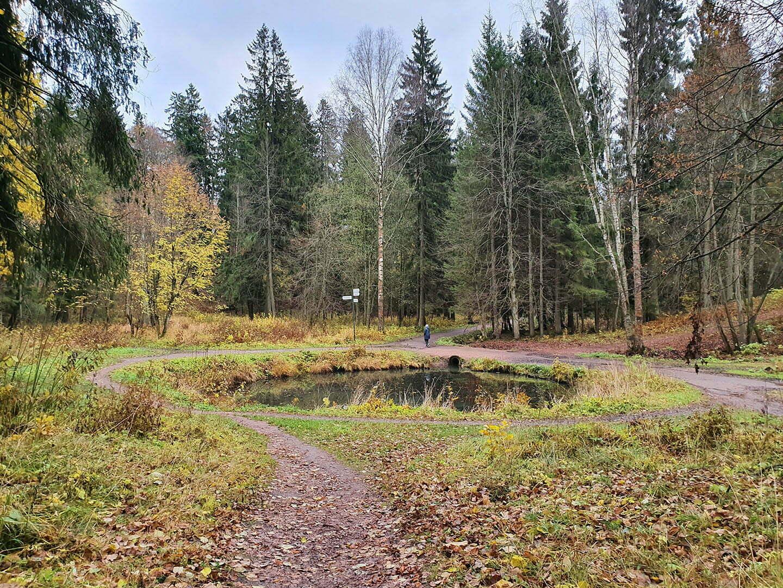 Пруд Звезда Шуваловского парка
