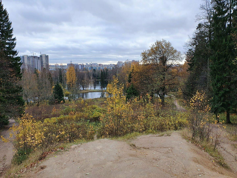 Вид на новые кварталы Парголово с горы Новый Парнас